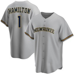 David Hamilton Milwaukee Brewers Youth Replica Road Jersey - Gray