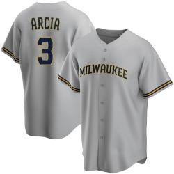 Orlando Arcia Milwaukee Brewers Youth Replica Road Jersey - Gray